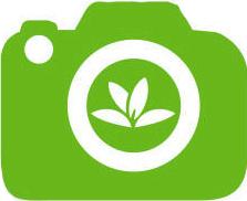 logoplant